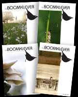 De Boomklever