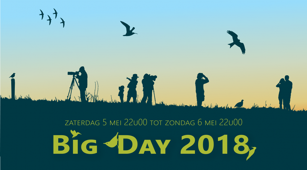 Big Day 2018 - webbanner - kopie